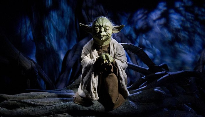 Blitzscaling Lessons From Master Yoda: May The Force Be With You